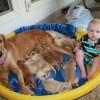 baby pool?